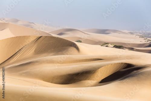 Namib desert, golden sea of sand dunes, Namibia, Africa. Swakopmund - 169823651