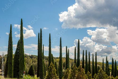 Photo Paesaggio panoramico della Toscana