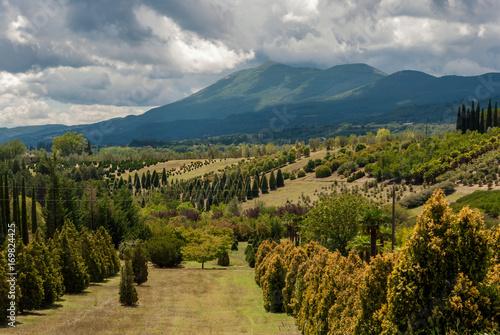 Fotografering  Paesaggio panoramico della Toscana