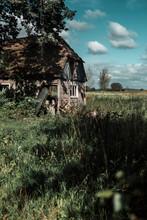 Neglected Farmhouse In Wild Garden.