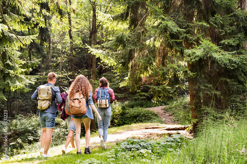 Obraz Teenagers with backpacks hiking in forest. Summer vacation. - fototapety do salonu