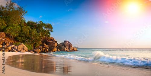 Fotografie, Obraz  Palm and tropical beach