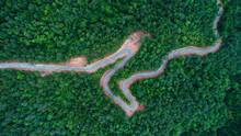 Roads In Dark Green Forest On ...