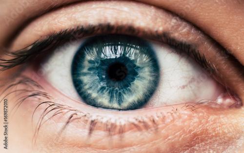 Pinturas sobre lienzo  Human blue eye