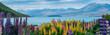 Leinwanddruck Bild - Landscape at Lake Tekapo Lupin Field in New Zealand