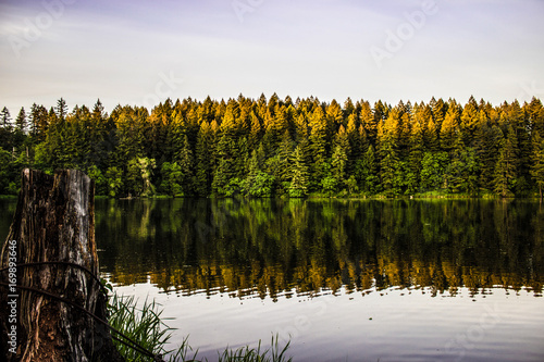 Sunset at Lacamas Lake in Camas, Washington - Buy this stock