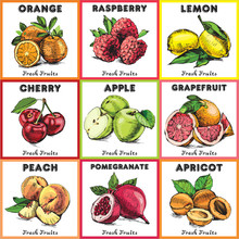 Eco Food Labels Set. Hand Draw...