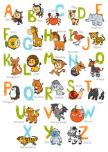 Vector Color Zoo Alphabet With Cute Animals