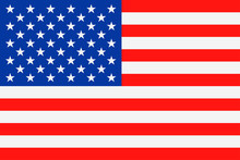 United States Flag Vector Flat Icon