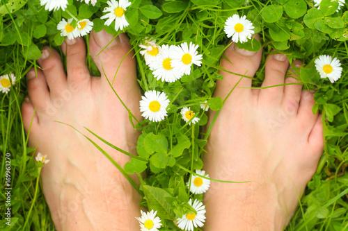 Fotografie, Obraz  bose stopy na zielonej trawie