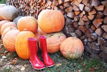 Autumn Pumpkin Red Rain Shoes ...