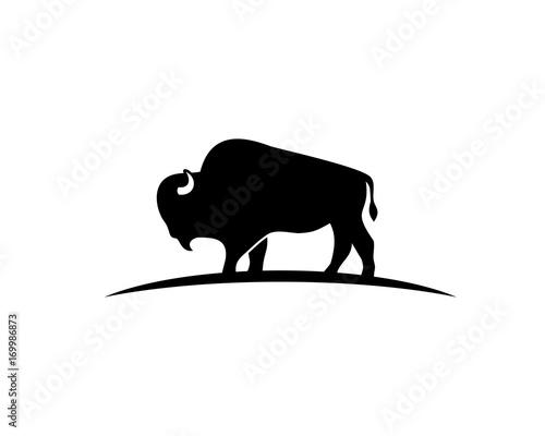 Obraz na plátně bison silhouette