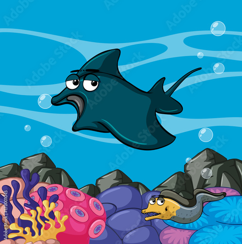 Poster Chambre d enfant Manta ray swims in the ocean