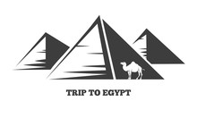 Trip To Egypt. The Egyptian Py...