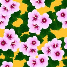Pink Hibiscus Syriacus - Rose ...