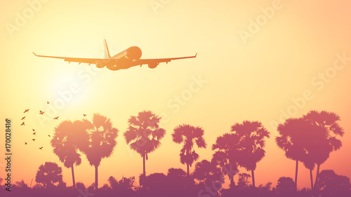 Photo Stands Coral Airplane flying over tropical palm tree and sunset sky abstract background.