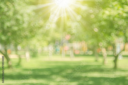 Valokuvatapetti Blur nature green park with sun light abstract background.