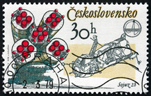 Postage Stamp Czechoslovakia 1979 Soyuz 28