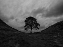 Storm Over Sycamore Gap