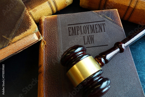 Valokuva  Employment Law book