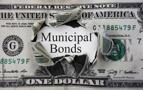 Municipal bond dollar Canvas Print