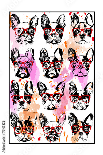 Photo sur Aluminium Art Studio Portraits of french bulldog wearing sunglasses