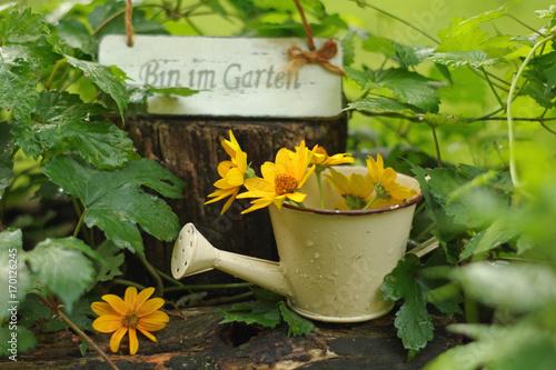 Kleine Gießkanne Mit Schild Bin Im Garten Und Helianthus