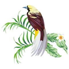 Fototapeta Vintage Tropical bird with plant print wallpaper