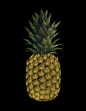 Embroidered yellow pineapple fruit. Fashion print embroidery texture stitch decoration patch. Tropic vector illustration on black background art - 170165431