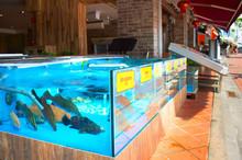 Fish Restaurant In Singapore