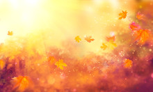 Fall Background. Autumn Colorf...