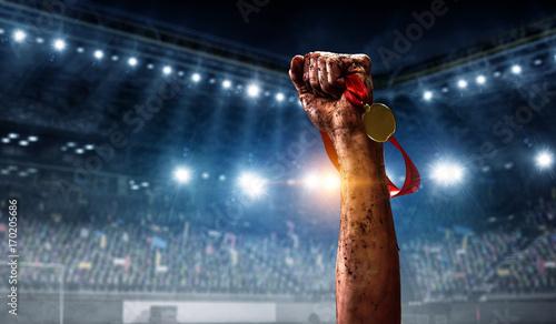 Fotografía  Winning at the olympic games