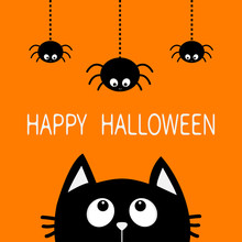 Happy Halloween. Black Cat Fac...