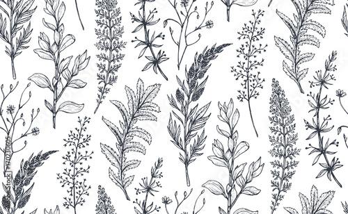 Αφίσα  Vector seamless pattern with hand drawn herbs and flowers