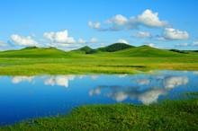 Grassland Scenery Under Blue Sky