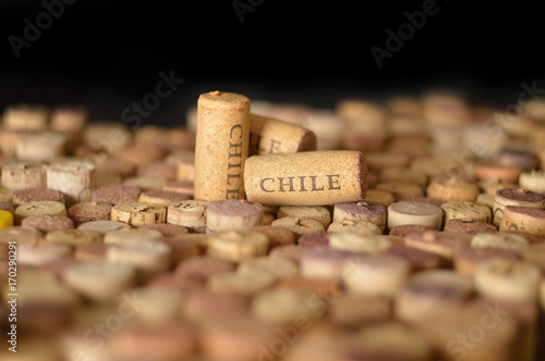 Valokuva  Countries winemakers. Chile's name on wine corks.