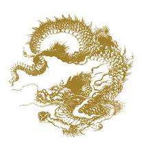Traditional Dragon Illustration