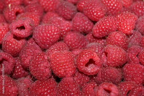 Canvas Prints Fruits raspberry