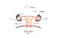 Brain Power Concept. Hand Drawn Brain As Powerful Muscle. Exercise For Head Isolated Vector Illustration.