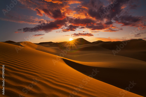 Photo sur Aluminium Desert de sable Beautiful sand dunes in the Sahara desert