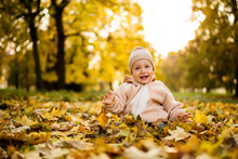 Smiling Baby Boy Playing With Maple Leaves