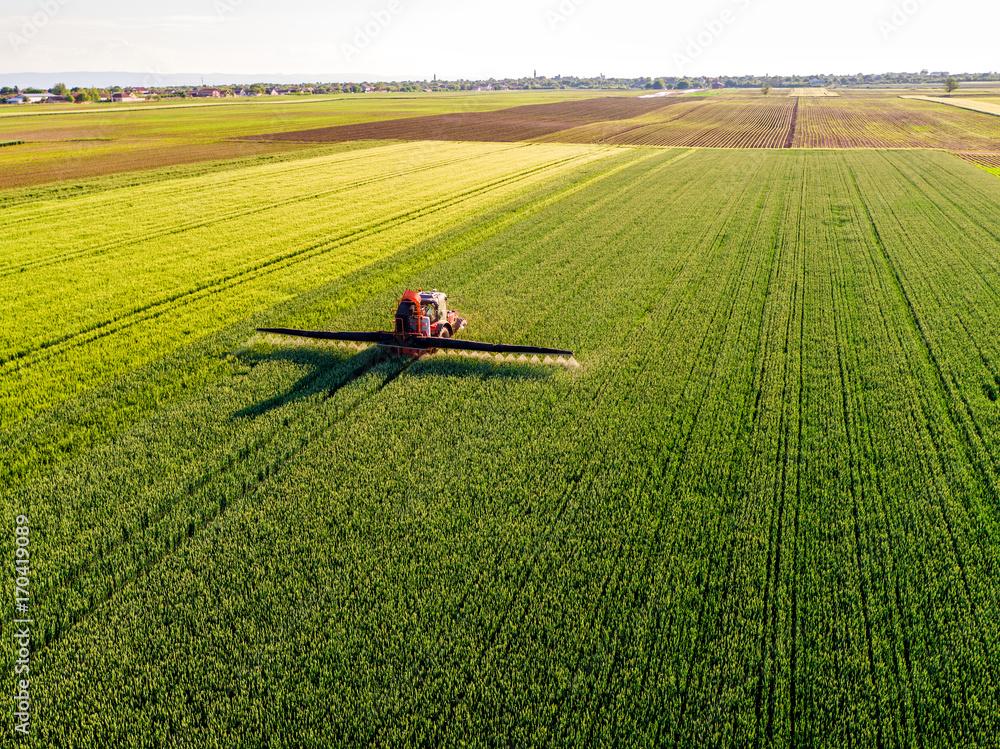 Fototapety, obrazy: Farmer spraying green wheat field