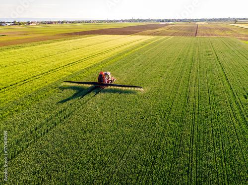 Fotografia  Farmer spraying green wheat field