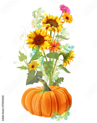 Vertical Autumn Border Orange Pumpkin Yellow Sunflowers Gerbera Daisy Flower Small Green