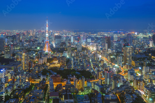 Foto op Aluminium Tokyo night view of Tokyo city, Japan