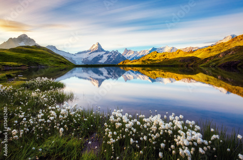 Poster Lac / Etang Great view of Mt. Schreckhorn and Wetterhorn above Bachalpsee lake. Location place Swiss alps, Grindelwald valley, Europe.