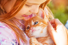 Little Girl With A Red Kitten ...