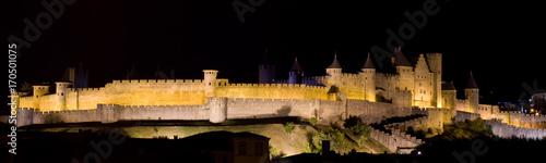 Cité de Carcassonne de nuit Canvas Print