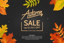 Autumn Leaves On A Dark Wet Asphalt Background. Autumn Sale Concept. Colorful Illustration For Poster, Banner, Leaflet, Flyer. Vector Eps 10.
