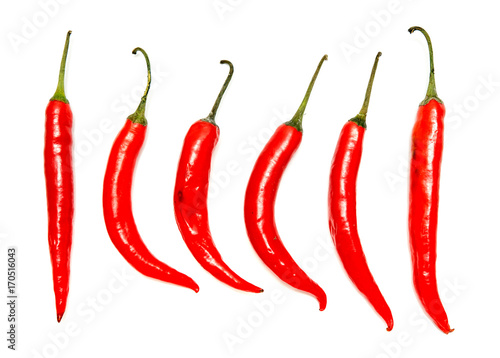 Red chile pepper bitter on white background